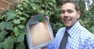 University of Utah solar ivy panels